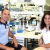 Nuevos grupos de investigación en el IBR