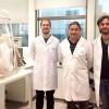 Superbacterias: descubren claves de la resistencia colectiva